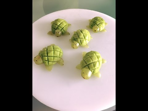 Kiwi turtle