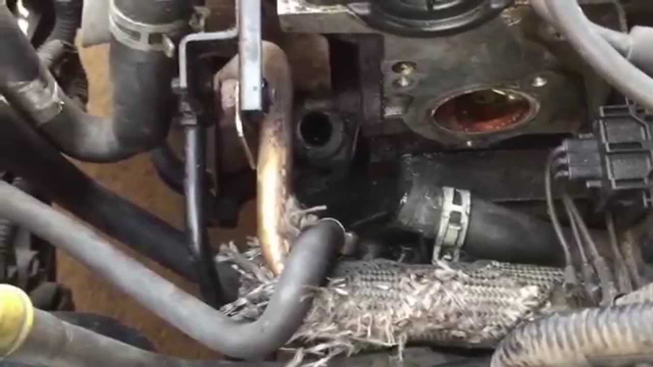 2001 Ford Focus Dohc Pcv Location Youtube