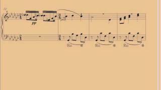 Franz Liszt Chant Polonais, mes joies.avi