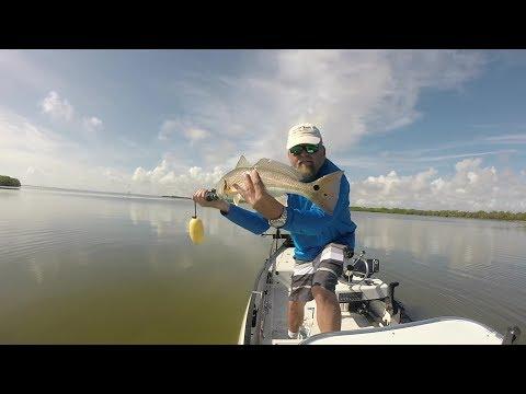 Mosquito Lagoon Fishing Report 8-24-2019