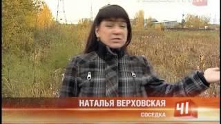 История пса Бакса достойна сценария для...