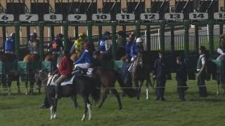Vidéo de la course PMU DOLCE VITA
