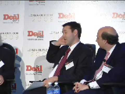 M&A Outlook 2009: Linklaters' Rees on why sovereign ...
