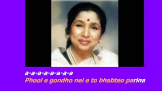 Phule Gondho Nei Eto Bhabte O Parina Karaoke