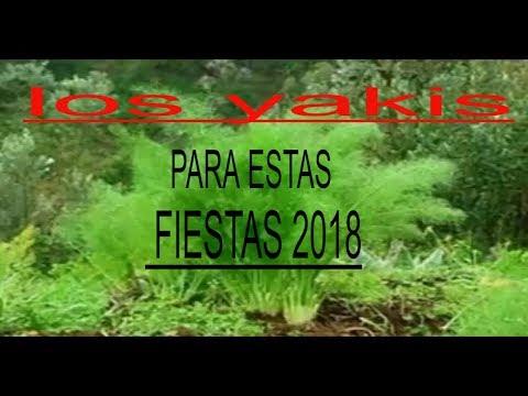 los yakis para estas fiestas 2018