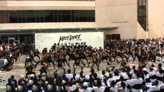 2014 joint u mass dance buda station 3 bu freshmen
