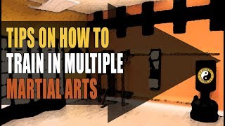 Kung Fu Training Question | How To Train In Multiple Martial Arts