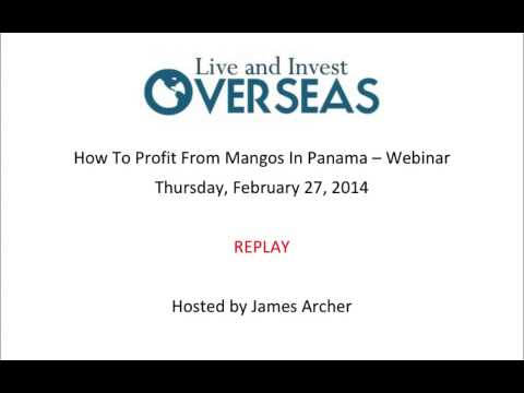 How To Profit From Mangos In Panama - Webinar