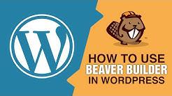 Build A WordPress Website In Minutes Using Beaver Builder