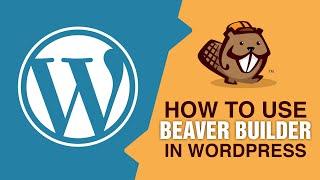 Builder Beaver Kullanarak Dakikada Bir WordPress Web Sitesi Kurmak