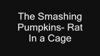 The Smashing Pumpkins- Rat In a Cage