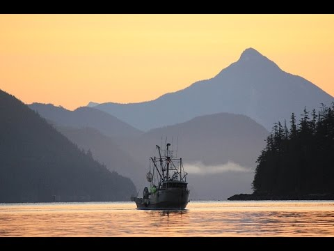 From Boat To Table: The Sustainable Seafood Supply Chain