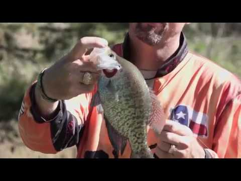 Shallow Water Crappie Fishing on Lake Cypress Texas
