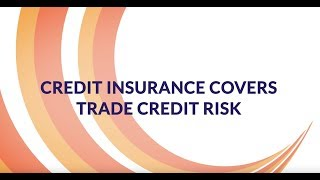 What is credit insurance? Covering your RISK, not bad debt...