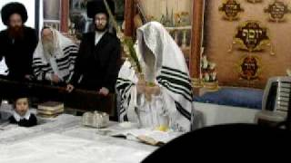 Nikolsburge Rebbe with the lulav  5770