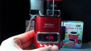 Mini Speaker WS 259 Removable Battery MicroSD MP3 USB AUX Radio Display Antenna