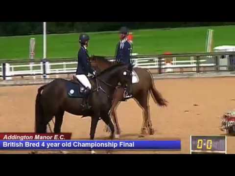 British Young Horse Showjumping Championships British Bred 4YO Final - Saturday 19th August 2017