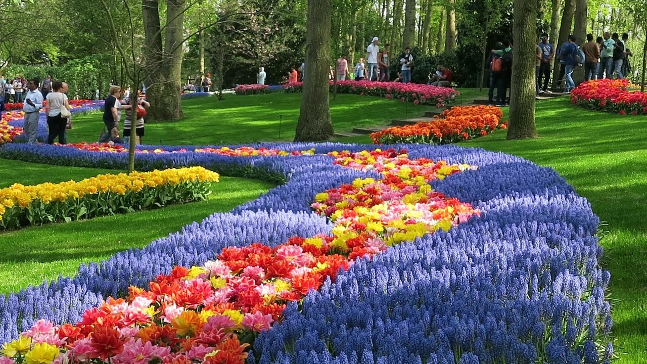 Image result for Keukenhof