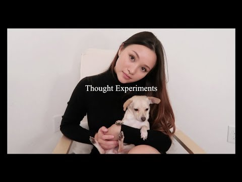 THOUGHT EXPERIMENTS | Philosophy