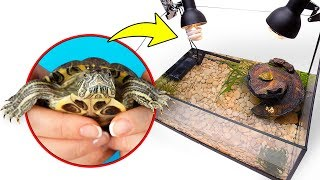 assembling-turtle-terrarium-for-two-cute-red-eared-turtles