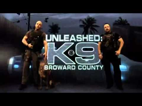 Download Youtube: Unleashed: K9 Broward County S01 E01 Parte 2