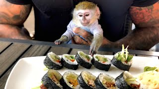 Baby monkey tries sushi for the first time!