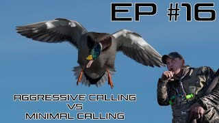 Aggressive vs Minimal Duck Calling - Ep #16 Field Facts With Forrest