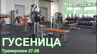 ГУСЕНИЦА по Суровецкому А.Е. Видео: 11