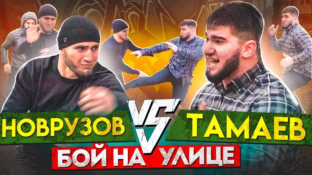Тамаев vs Новрузов Бой Конфликт в студии
