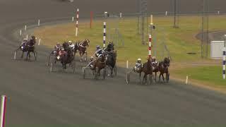 Vidéo de la course PMU PRIX SPARTRAPPA (LOPP 4)