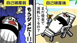 パンダが自己破産したらしい。 なんでもいいけど俺が貸した1万円はどう...