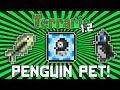 Terraria 1.2: How to get the Baby Penguin Pet! (Fish Summoning Item) @demizegg