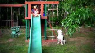 Our Dog Chance Climbs Ladder To See Baby Cj In The Swing Set.