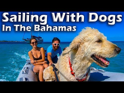 Sailing With Dogs In The Bahamas! S5:E12