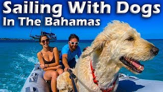 sailing-with-dogs-in-the-bahamas-s5-e12