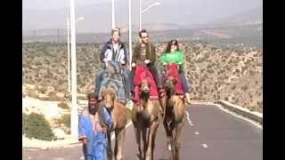 Camel Riding in Agadir