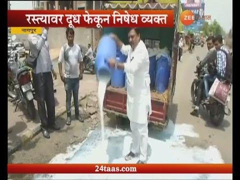 Nagpur | Jai Jawan Jai Kisan Sanghatna Spilling Milk On Road For Farmers Strike