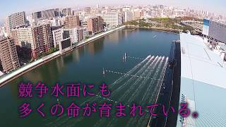 ボートレース平和島 http://www.heiwajima.gr.jp/ スカパー!・第18回JL...