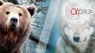 Хищные млекопитающие (Валентин Пажетнов и Владимир Бологов)