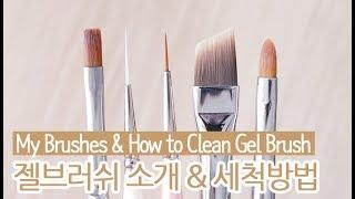 젤브러쉬 소개 u0026 세척방법 : My Brushes u0026 How to Clean Gel Brush