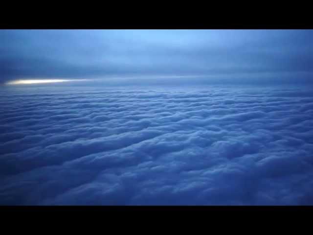 Dasha Rush - Ocean Shy  / Official Video / Timid Ocean Drawings /