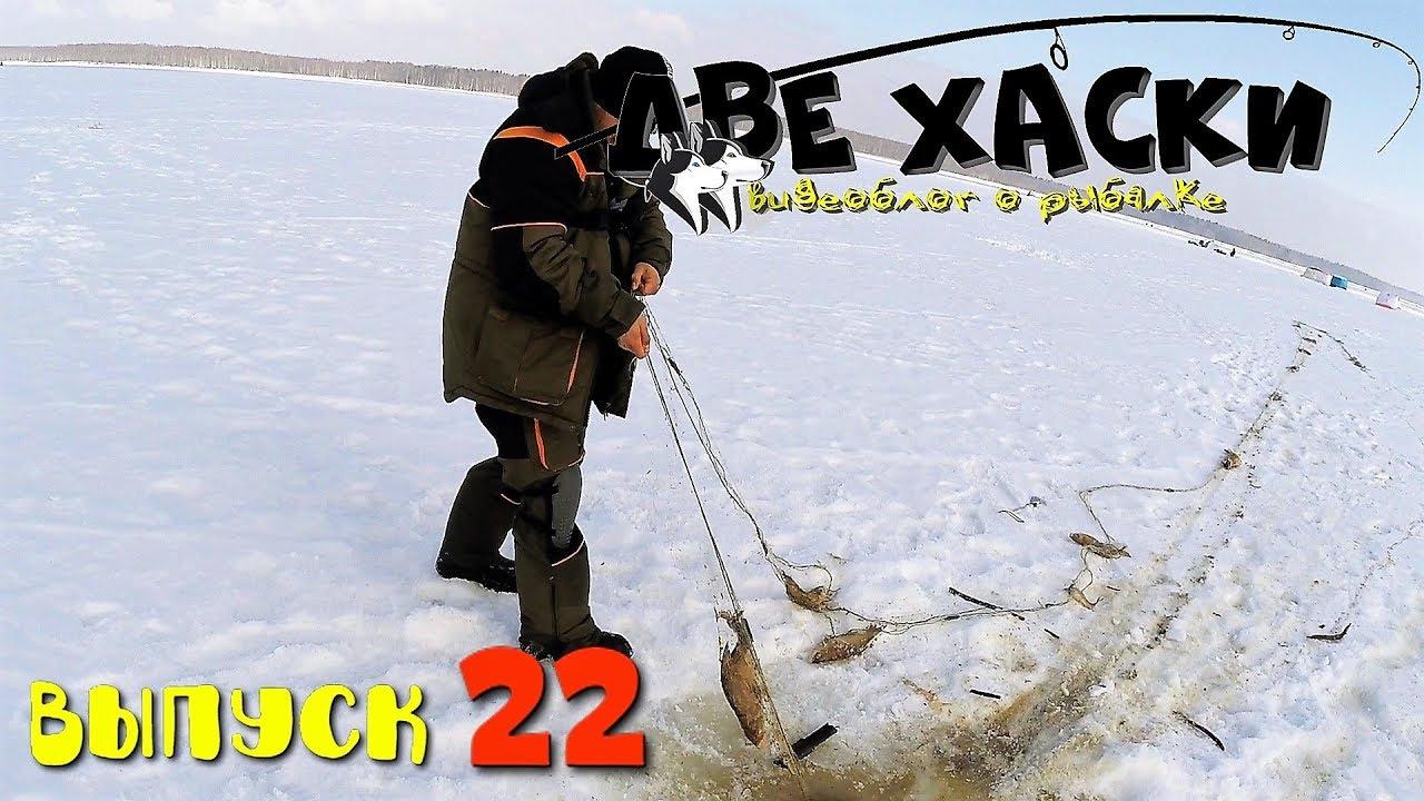 СНЯЛИ СТАРУЮ СЕТЬ. ЖЕСТЬ! Рыбалка на Яузе зимой.