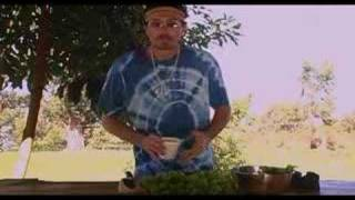 The Hippy Gourmet TV Show: Episode 85