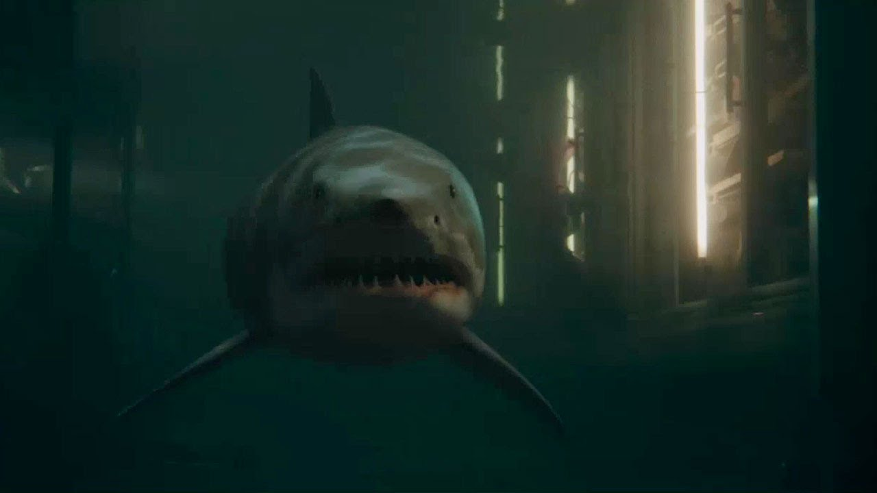 Best Shark Movies of All Time - Shark Attack and Ocean Movies