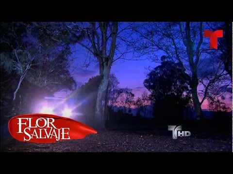 Flor Salvaje | Capítulo 145 | Telemundo