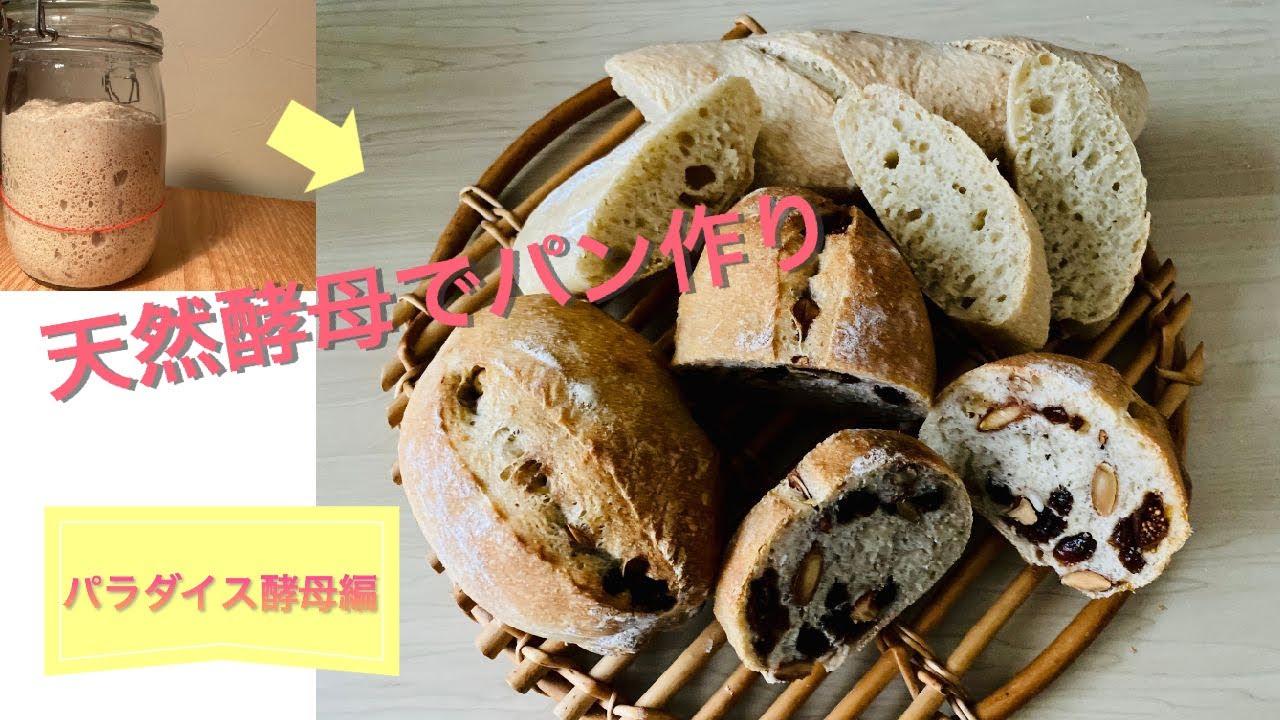 パン パラダイス 酵母