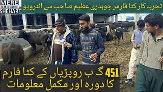 How is Katta farming business in Pakistan | Visit best katta farm of 451GB Tandlianwala