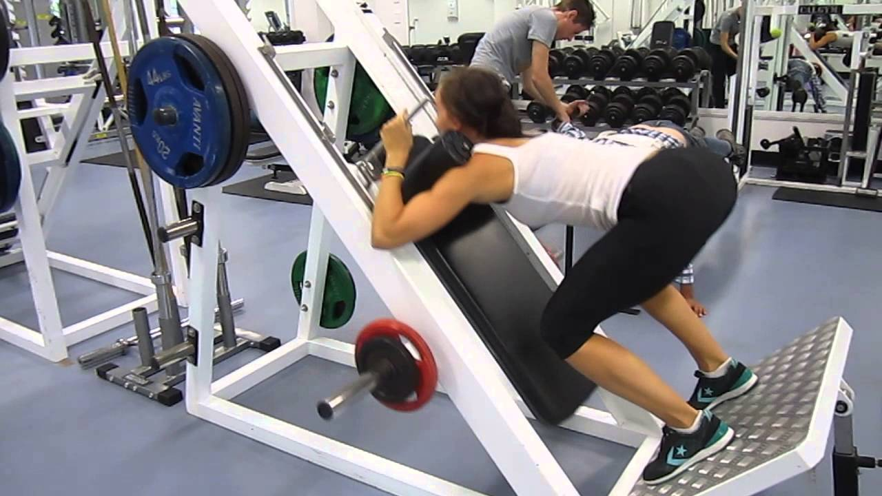 Reverse hack squat - YouTube