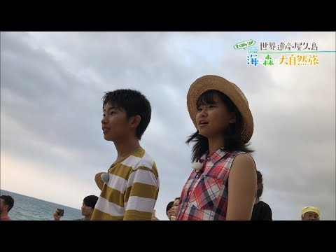 (2)すくすくぽん!SP 世界遺産・屋久島 海と森の大自然旅 出演:加藤清史郎・智恵里・憲史郎
