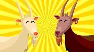 Iki inatçı keçi şarkı sözleri